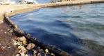 Foça Kıyısında 8km Petrol Atığı