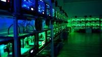 Karanlık Fabrikalar Dönemi, Endüstri 4.0